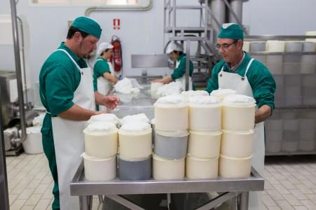 Moldeado y prensado del queso
