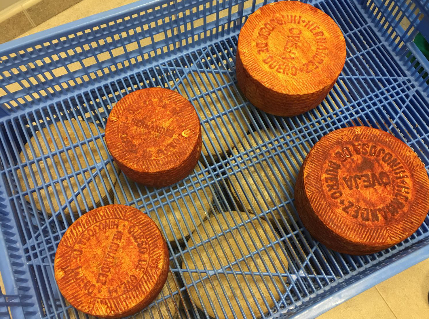 queso pimenton hinojosa